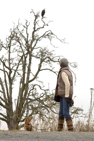 Senior woman and her dog watching a bald eagle   Stock Photo - 17415776