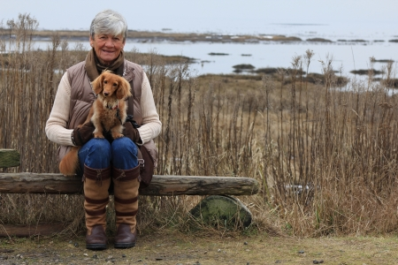 Senior woman outside with her dachshund dog   Stock Photo
