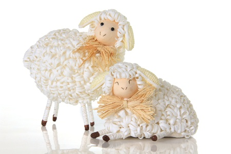 Easter sheep, studio isolated on white   Stock Photo - 17959973