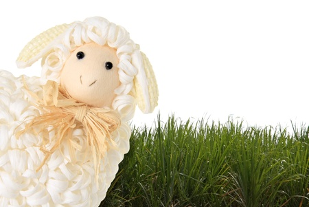 Easter sheep and grass on a white background  Stock Photo - 17959974