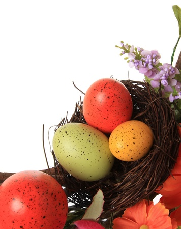Easter eggs in a nest, studio isolated on white Stock Photo - 17959976