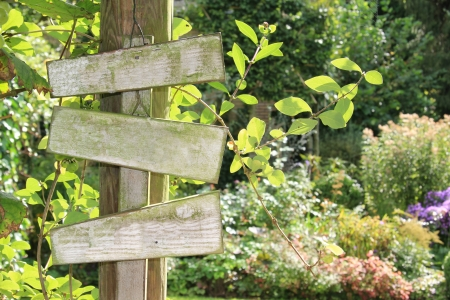 Summer garden wooden sign, add your own text Stock Photo - 18138150