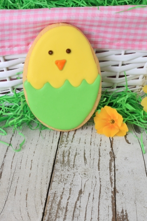 Easter chick cookie with easter eggs  Stock Photo - 18153567