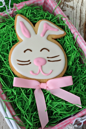Easter bunny cookie  Stock Photo - 18153566
