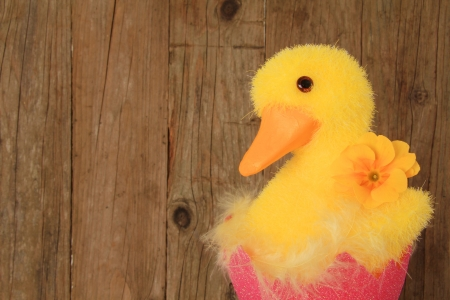 Easter chick ornament on a wooden background Stock Photo - 18153560