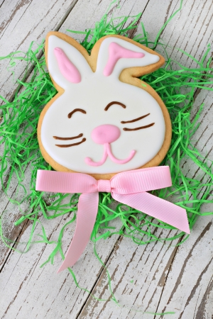Easter bunny cookie Stock Photo - 18198155
