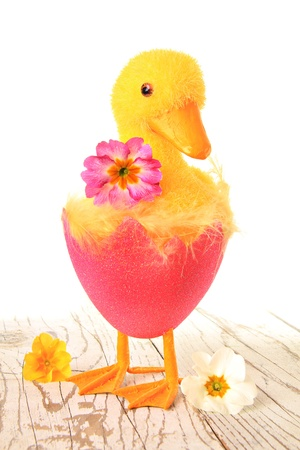 Easter chick ornament   Stock Photo - 18264479