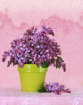 Lilac flower arrangement on a vintage background Stock Photo - 19576135