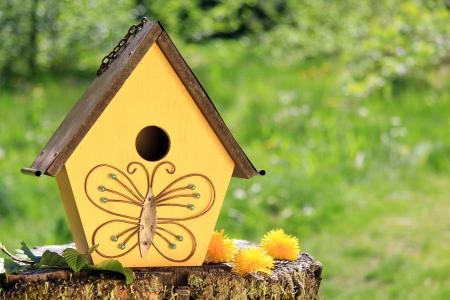 maison oiseau: Fantaisie maison d'oiseau en bois