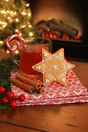 Christmas cookie and hot apple cider by the fireplace  Also available in horizontal