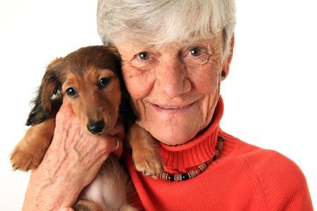 ancianos felices: Superior de la mujer la celebración de su nuevo cachorro dachshund