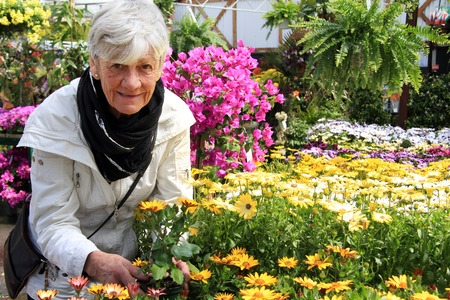 Senior woman shopping for annual flowers at a plant nursery