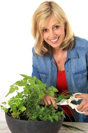 Lachende vrouw het snijden van verse kruiden uit een plantenbak