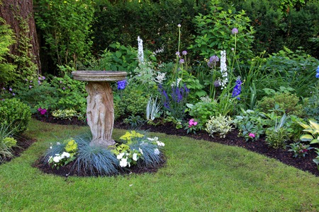 ornamental shrub: Bird bath in a beautiful summer garden.