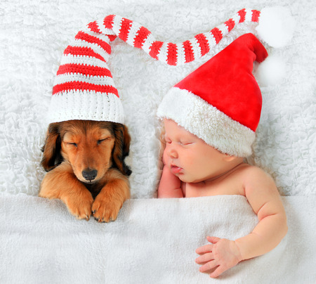 Newborn baby and puppy wearing Christmas Santa hats. photo