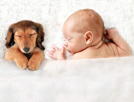 生まれたばかりの赤ちゃんの毛布の上に眠っています。