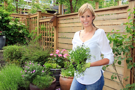 people: Smiling fifty year old lady gardener outside in the garden holding a pack of lobelia. Stock Photo