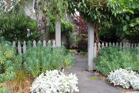 arbor: Garden gate and picket fence surrounded by lush perennials. Also available in vertical.