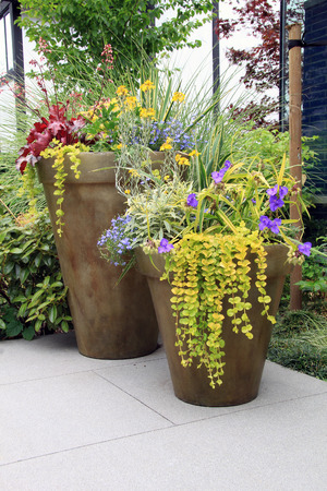 Two large containers of perennial garden flowers.