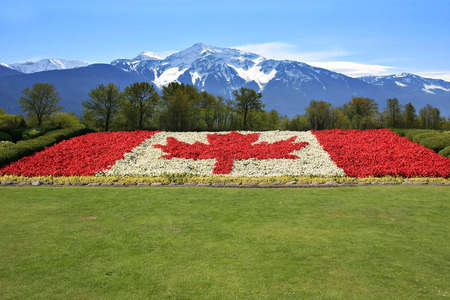 canada flag: Canada flag done in red and white begonia flower against a backdrop of the Rocky mountains.
