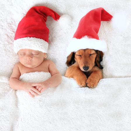 Sleeping newborn Christmas baby alongside a dachshund puppy wearing Santa hats.