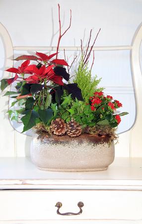 arreglo floral: Arreglo floral cubierta para la Navidad.