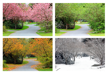 Spring, Summer, Fall and Winter. Four seasons photographed on the same street from the exact same location. Stockfoto