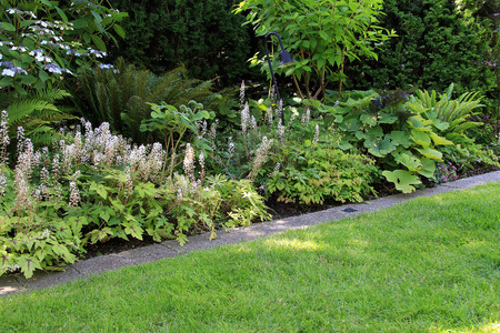 Park Als Tuin : Perennial park garden flower bed in summer. stock photo picture and