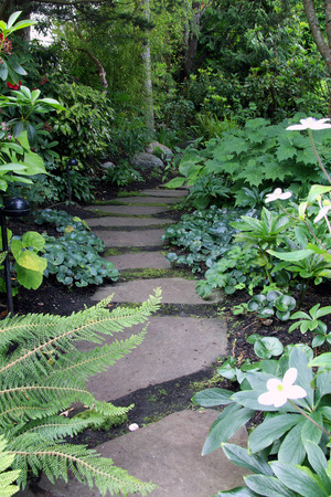 flower garden path: Garden path Stock Photo