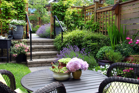 perennial: Small townhouse perennial summer garden Stock Photo
