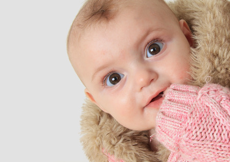 faux: Beautiful 6 month old baby girl with finger in mouth, photographed in studio, wearing faux fur knitted jacket.  Stock Photo