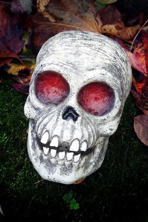 halloween skeleton: Glowing Halloween skeleton decoration.