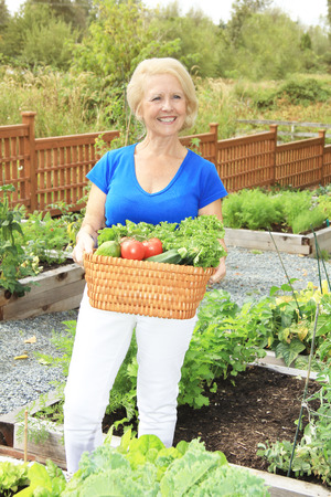 plot: Beautiful senior lady in the garden holding a wicker basket filled with freshly picked organic fruits and vegetables.