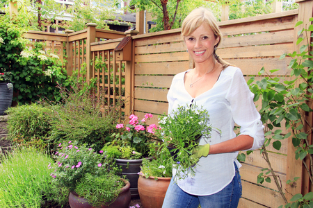 Smiling fifty year old lady gardener outside in the garden holding a pack of lobelia flowers. photo