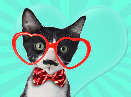 Cute black and white kitten with moustache and bow tie, wearing heart shaped eye glasses for Valentines day.  Contemporary art collage.