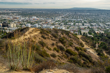 Downtown Los Angeles and Hollywood Hills, view from Runyon Canyon Park Standard-Bild