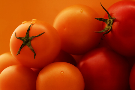Yellow and red tomatoes with yellow background, copy space