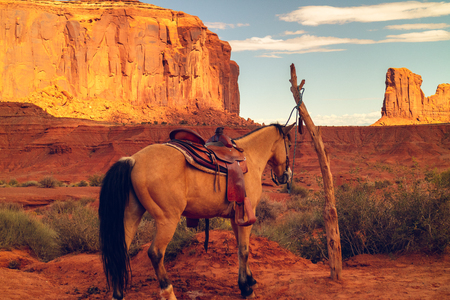 Beautiful Landscape and Horse, Monument Valley Navajo Tribal Park