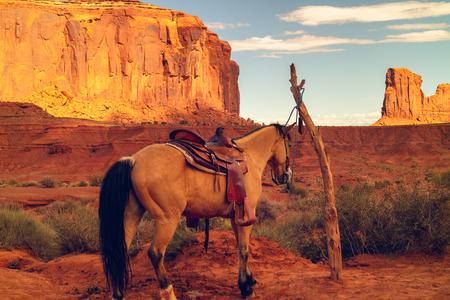 Schöne Landschaft und Pferd, Monument Valley Navajo Tribal Park