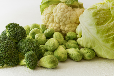 Cabbage Family. Brussels Sprouts, Green Cabbage, Broccoli, Cauliflower