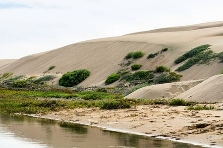 Morro Bay Dunes Natural Preserve, Los Osos, California