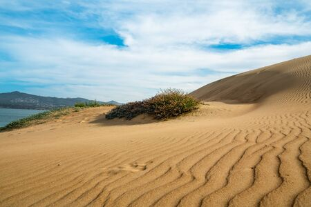 Sand Dunes on the Beach with Beautiful Cloudy Blue Sky in Background Banco de Imagens