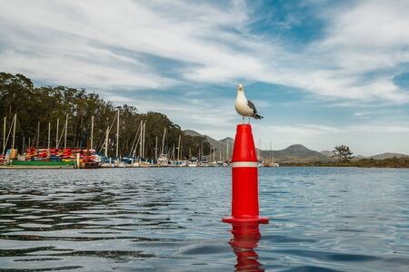 Sea Harbor and Seagull Sitting on the Buoy Against Cloudy Blue Sky