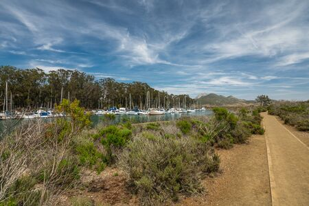 Marina Point Loop Trail Goes Through the Estuary and an Elfin Forest near the Harbor at Morro Bay State Park, California Stock Photo