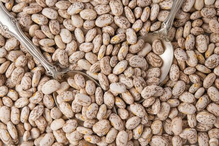 Pinto Beans Close Up Top view, Food Background, Dried Beans, Legume
