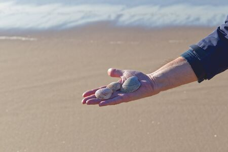 Seashells on a palm of man's hand, close up, sand beach background Stock Photo