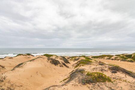 Oceano sand dunes recreation area, California