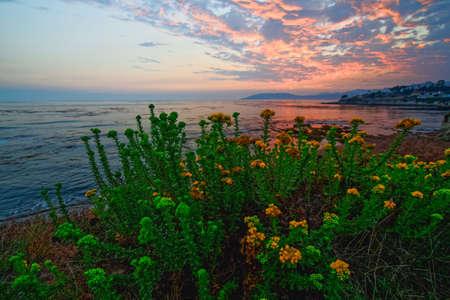 Beautiful pink sunset on the beach Zdjęcie Seryjne