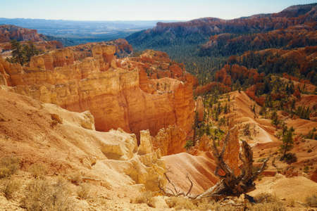 Scenic landscape of Bryce Canyon National Park, Utah