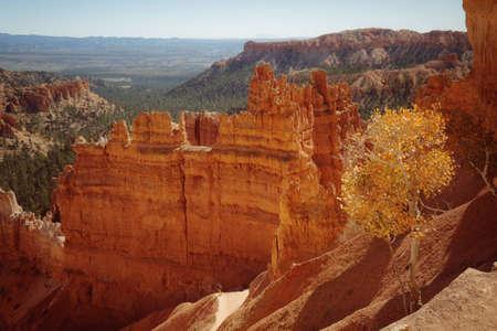 Bryce Canyon National Park, Utah. Beautiful fall season